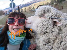 懐かしい羊さん⭐️_c0151965_18254211.jpg