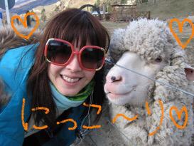 懐かしい羊さん⭐️_c0151965_18254262.jpg