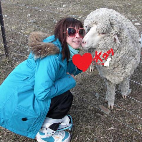 懐かしい羊さん⭐️_c0151965_18254368.jpg