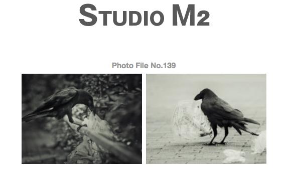 STUDIO M2 Photo File No.139 「TOKYOカラス ~ 恵比寿 朝鴉」_a0002672_6231868.jpg