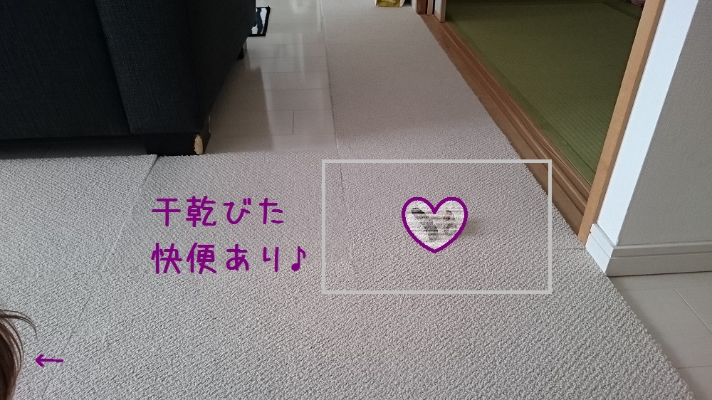 c0363378_13501018.jpg