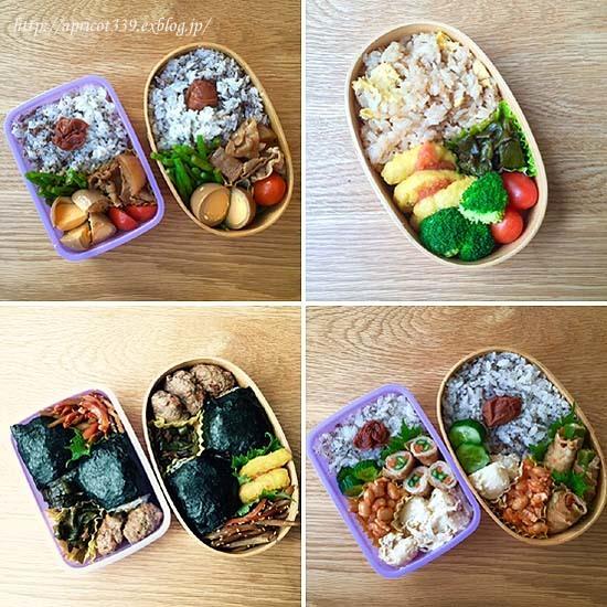 常備菜と子どものお弁当と、夕立のあとに見た景色_c0293787_14051141.jpg