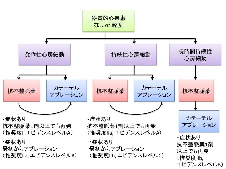 心房細動アブレーションの適応に関するわかりやすい図表:Circ誌心房細動アブレーションの総説_a0119856_2214718.jpg