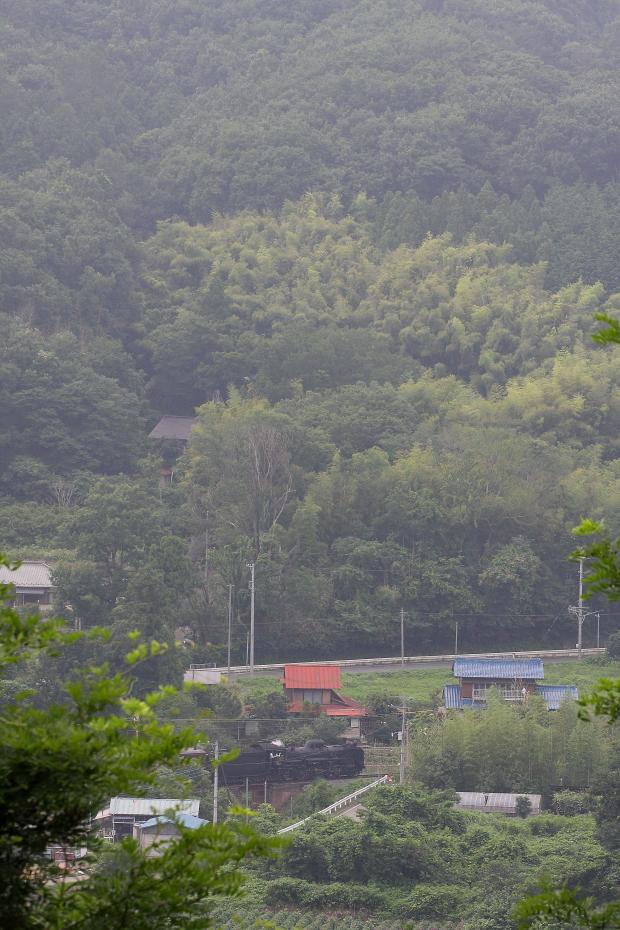 隙間に汽車が見えた - 2016年夏・秩父 -  _b0190710_17892.jpg