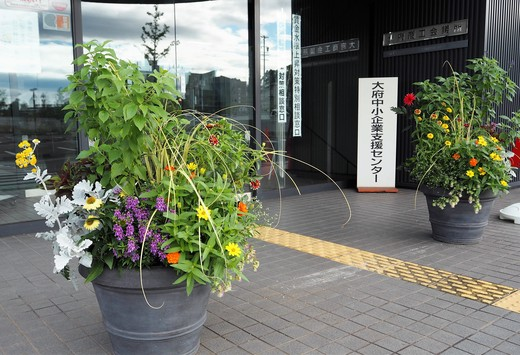 健幸(けんこう)の黄色い花プロジェクト_f0139333_13544642.jpg