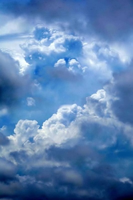 妖雲が猛暑を誘う_b0314043_07273165.jpg