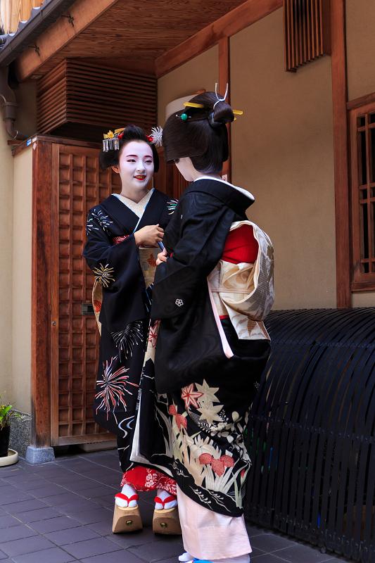 八朔(祇園甲部・西村、つる居の皆さん)_f0155048_2362825.jpg