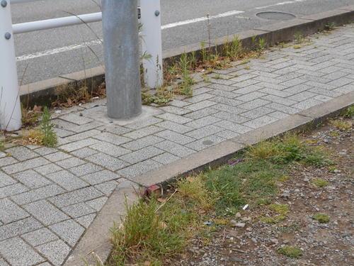 歩道の拡幅_a0162505_1654166.jpg