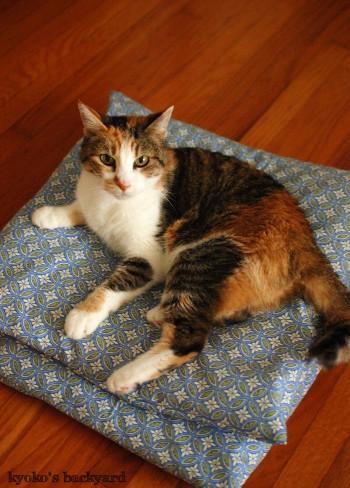 意図せず和風な、猫用クッションカバー_b0253205_03040965.jpg
