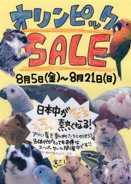160805 セールのお知らせ☆_f0189122_15131981.jpg