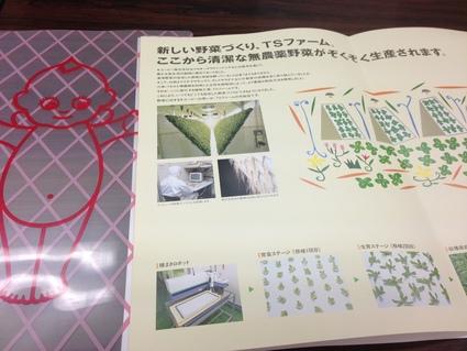 『 キューピー植物工場 (白河市) 』_f0259324_2057643.jpg