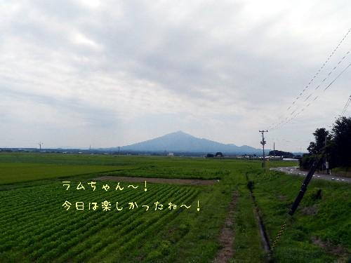 f0205887_20218100.jpg