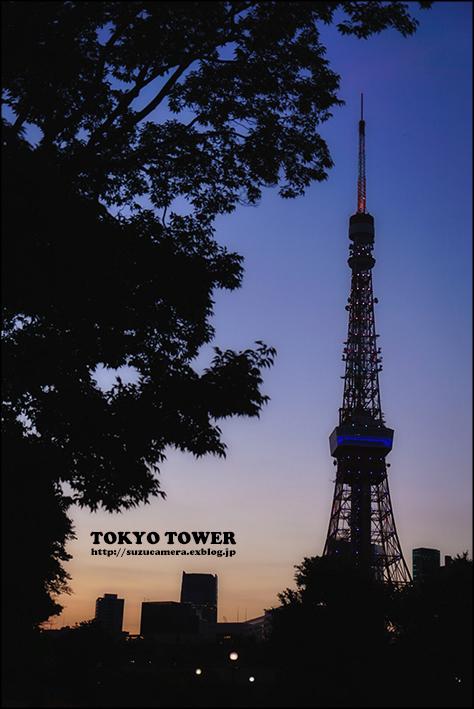 東京TOWER_f0100215_23205015.jpg