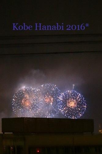 Kobe Hanabi 2016*_b0310144_22042902.jpg