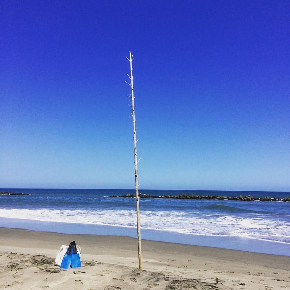 海の季節!!_f0145844_14295667.jpg