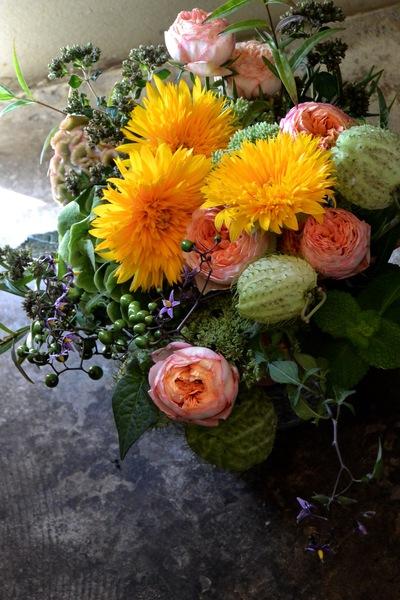 里山の花・ヤマホロシ。。。_a0229658_826876.jpg