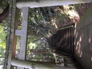 琴平山(こんぴらさん)_d0339676_14272363.jpg