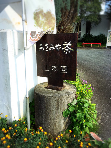 山本園 with TEA_e0292546_20151694.jpg