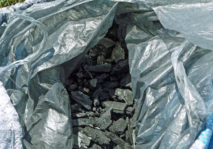鎌倉だいこん栽培予定地に六国見山間伐材使用の炭撒き_c0014967_10171329.jpg