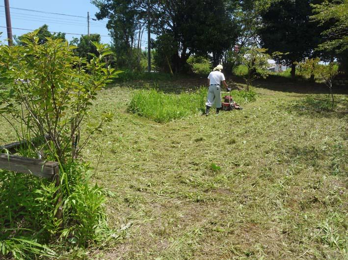 レヴィンパパが野口初太郎翁頌徳碑建立地の下草刈り指示_c0014967_8465841.jpg