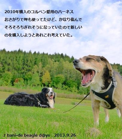 f0150377_013372.jpg