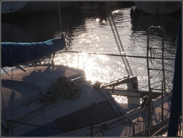 夕暮れの港_c0228386_174841.jpg