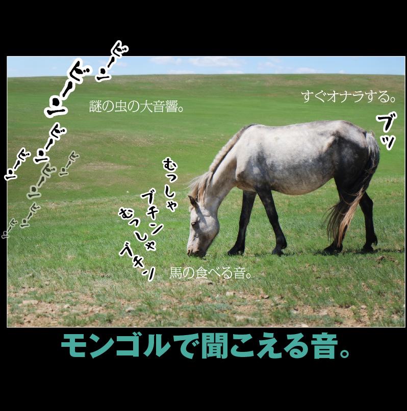 a0358016_10435807.jpg