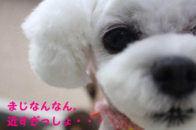サプライズ~!!_b0130018_7144233.jpg