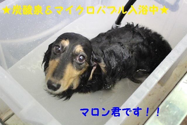サプライズ~!!_b0130018_7172224.jpg