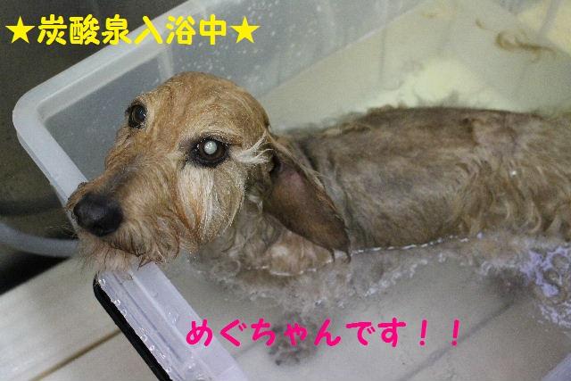 サプライズ~!!_b0130018_7201846.jpg