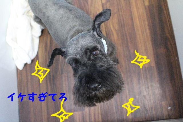 サプライズ~!!_b0130018_7242236.jpg