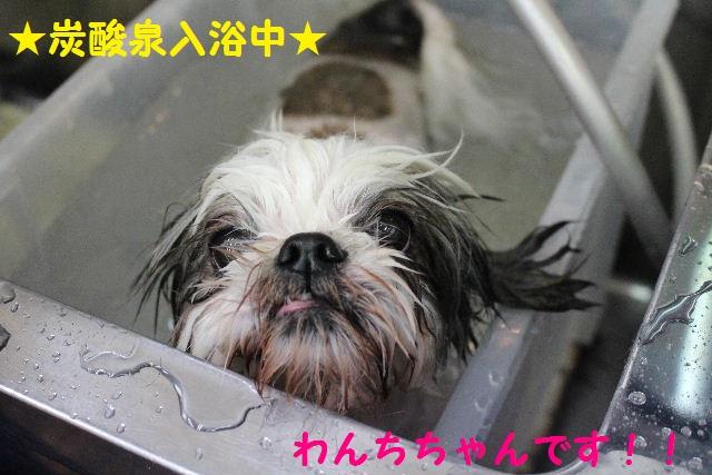 サプライズ~!!_b0130018_7294910.jpg