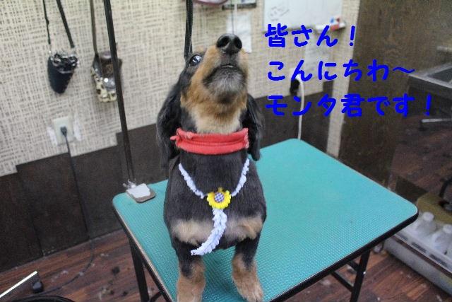 サプライズ~!!_b0130018_7351988.jpg