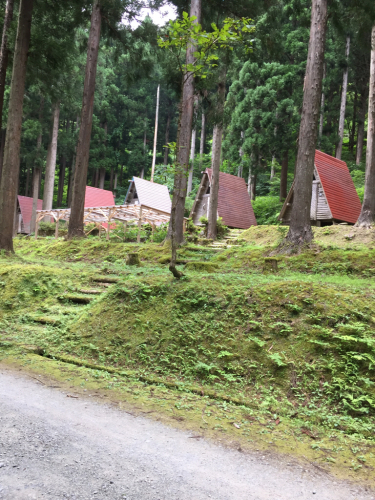 県民の森〜川遊び(*^^*)_f0170422_09185118.jpg