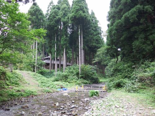 県民の森〜川遊び(*^^*)_f0170422_09185145.jpg