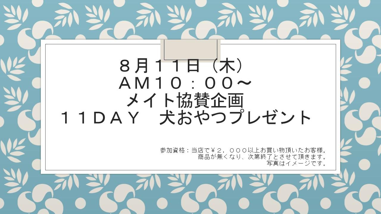 160809 11DAYイベント告知_e0181866_8595673.jpg