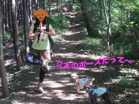 御岳山を大塚山コースで_a0109467_23135376.jpg