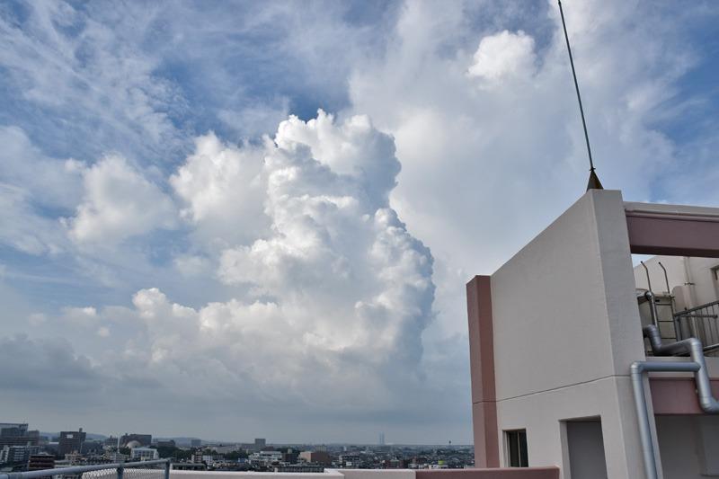 朝んぽと、すてきな雲祭り♪ (*^_^*)_c0049299_2231755.jpg
