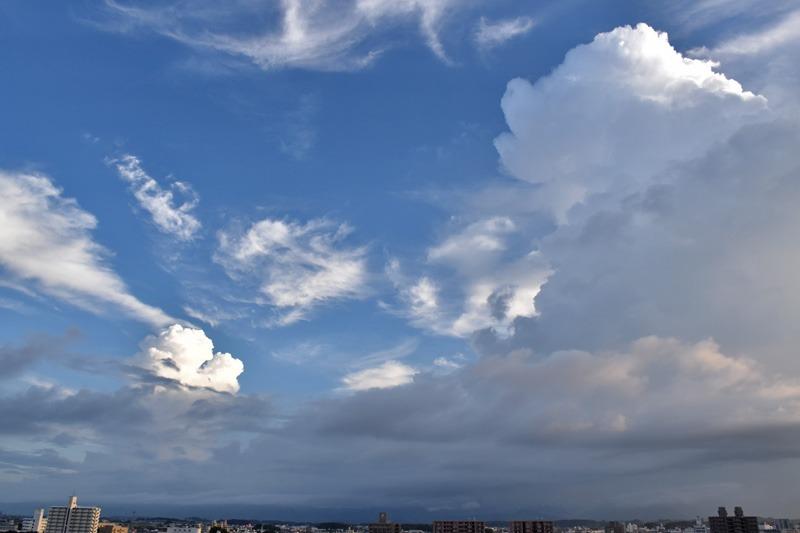 朝んぽと、すてきな雲祭り♪ (*^_^*)_c0049299_2262264.jpg