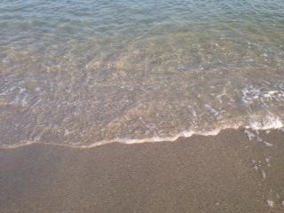 夏活 No.503_c0102513_19255497.jpg