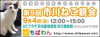 8/23 引き出し編   レポート紹介 全68頭_f0078320_1227733.jpg