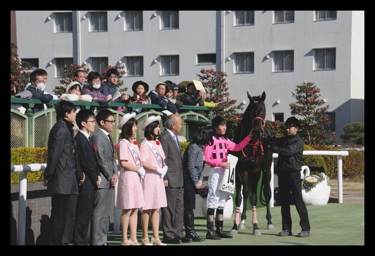 結局居ない・・・・・・・・・・・・・・・・札幌競馬_f0053218_2221720.jpg