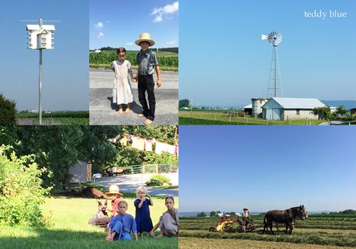 Amish Country Living  アーミッシュカントリーリビング_e0253364_19485099.jpg