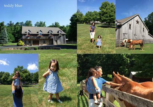 Amish farm stay  アーミッシュ ファームステイ_e0253364_19544536.jpg