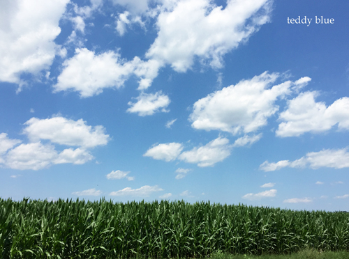 Amish Country Living  アーミッシュカントリーリビング_e0253364_20184008.jpg