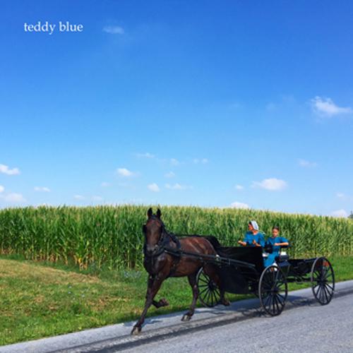 Amish Country Living  アーミッシュカントリーリビング_e0253364_20210955.jpg