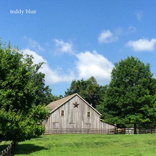 Amish farm stay  アーミッシュ ファームステイ_e0253364_20234436.jpg