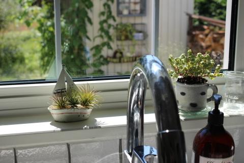 暑い夏の窓辺に…_e0341606_22252942.jpg