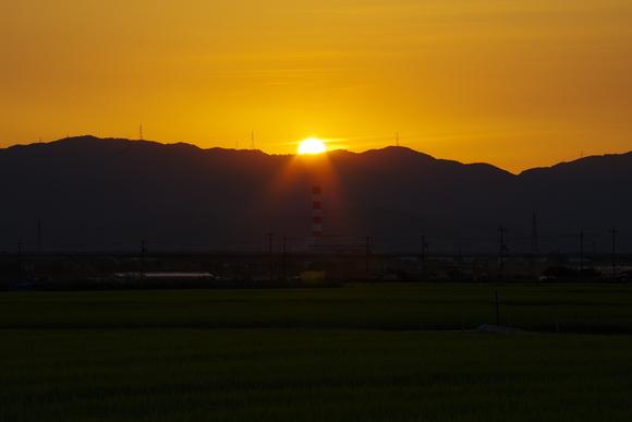 近くの田んぼでウユニ塩湖気分(爆)_d0227044_1044569.jpg