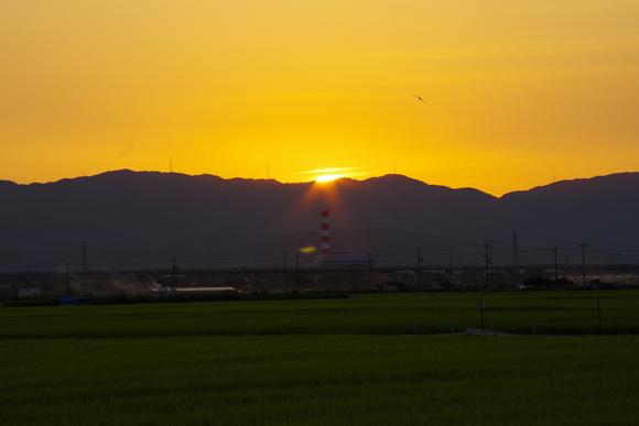 近くの田んぼでウユニ塩湖気分(爆)_d0227044_1061925.jpg
